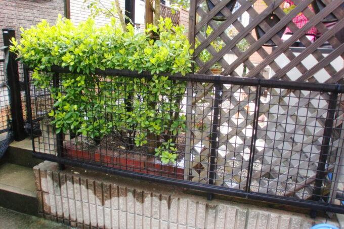 画像:外部水栓移設前の駐車場側からの写真